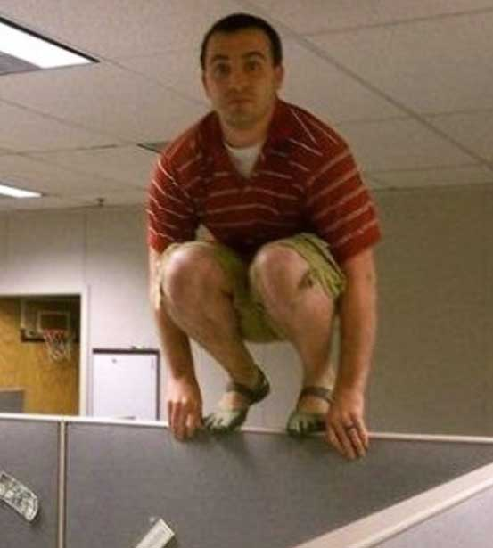 Office owling is a great way to win the respect of your boss!