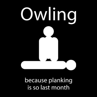 Owling : because plainking is so last month